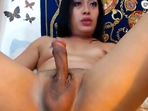 Very Beautiful Sexy Shemale Teases for Cock
